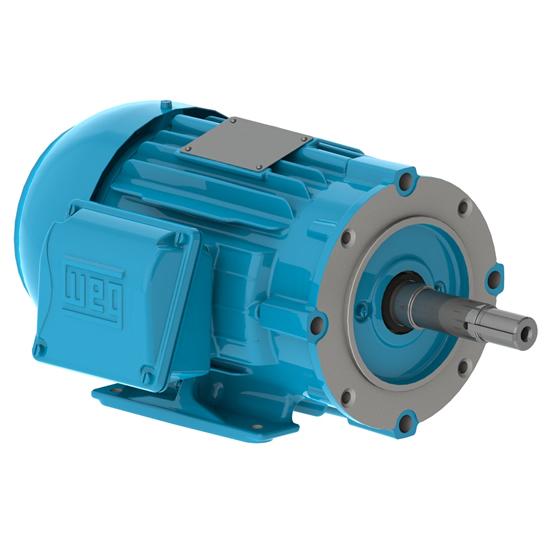 W22 JM Pump